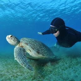 Freediving – dokonalé sebaovládanie (nielen) pod vodou
